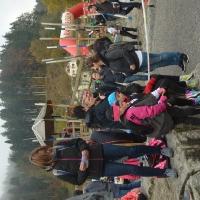 2016-10-29 Herbstlauf, Wila_13