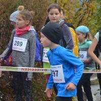 2016-10-29 Herbstlauf, Wila_3