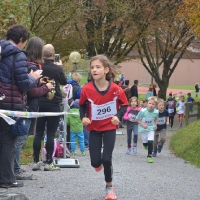 2016-10-29 Herbstlauf, Wila_5