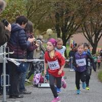 2016-10-29 Herbstlauf, Wila